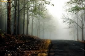 Vizibilitate scăzută pe drumurile din judeţ