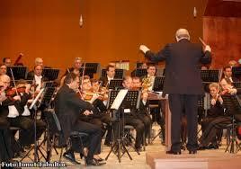 Directori interimari la Filarmonică, respectiv Teatrul Vasilache