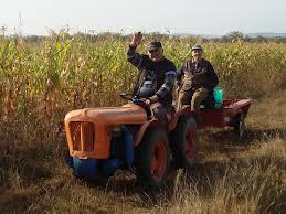 Fermierii, obligaţi să îşi facă conturi în Trezorerie