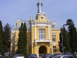 Chinezii, interesați să construiască locuințe la Botoșani