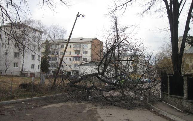 Copaci rupţi, panouri puse la pământ şi acoperişuri smulse de vânt