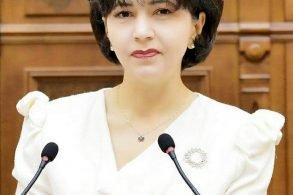"""POLITICADoina Federovici: """"Legea achizițiilor strategice poate avantaja modernizarea drumului Botoșani-Târgu Frumos"""""""