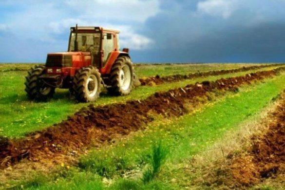 ECONOMIEAgricultura, asul din mânecă al României