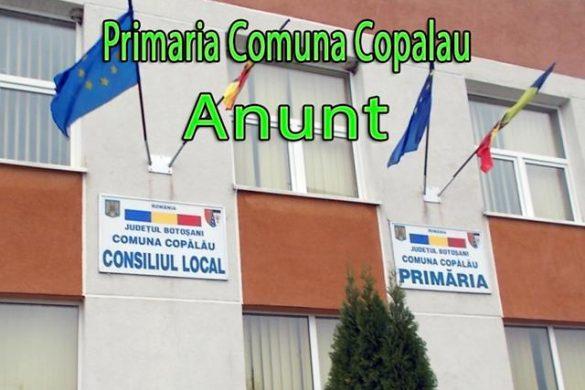 ANGAJARI - Locuri de muncă scoase la concurs de Primăria Comunei Copalau