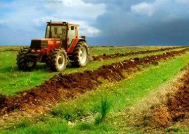 AGRICULTURĂGuvernul a aprobat plăţi pentru ajutoare în agricultură în valoare de circa 1,8 miliarde euro