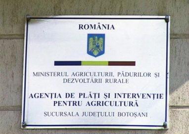 AGRICULTURĂVești bune pentru fermieri. Vin banii de subvenții
