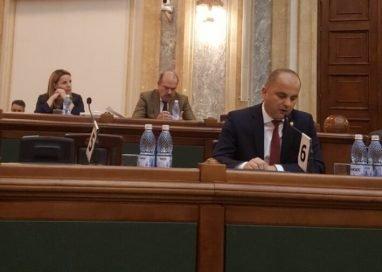 """POLITICA""""Ajutor de Stat pentru dezvoltarea sectorului avicol din România"""""""