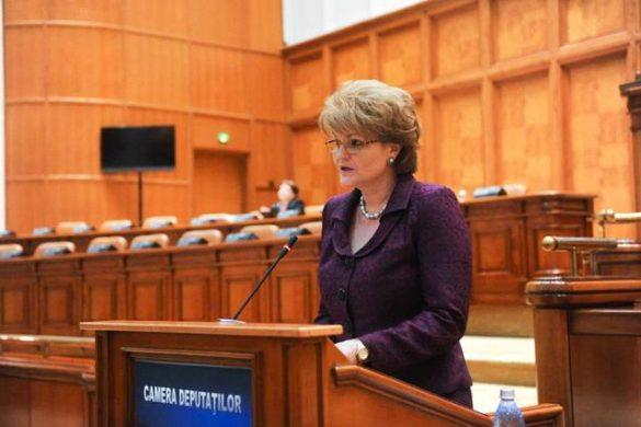 """POLITICAHuncă, deputat PSD: """"Avem nevoie de adaptarea serviciilor de consiliere și orientare profesională din sistemul de învățământ la oferta ocupaţională de pe piața piaţa muncii"""""""