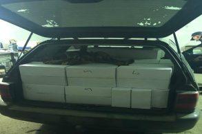 EVENIMENTSute de kilograme de prune uscate confiscate de poliţiştii de frontieră