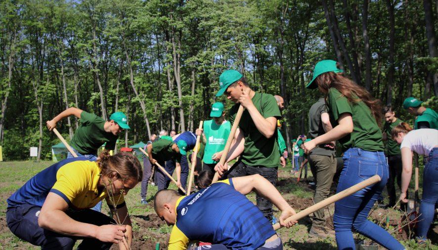 EVENIMENTStejarii Romaniei si silvicultorii Romsilva au plantat impreuna stejari la Branesti