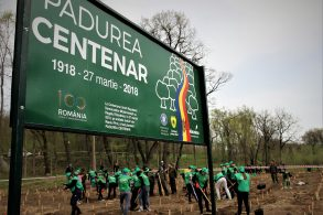EVENIMENTSilvicultorii din România și Republica Moldova au marcat Centenarul Marii Uniri prin plantarea unei păduri memorabile pe malurile Prutului